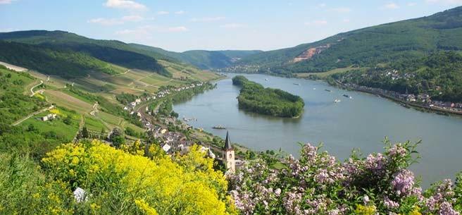 Rheingau, Hessen